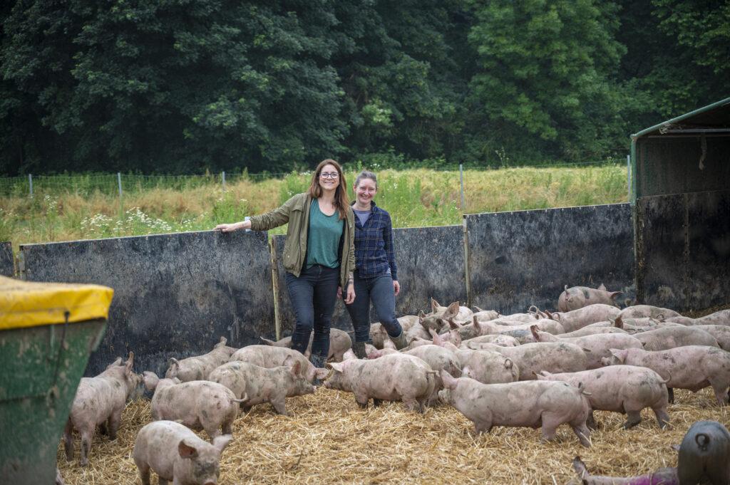 Ruhrtaler_Freilandschweine